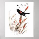 Watercolor Red Wing Blackbird Bird Nature art Poster
