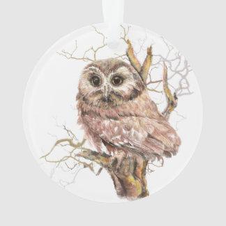 Watercolor Saw Whet Owl Bird Nature Art Ornament