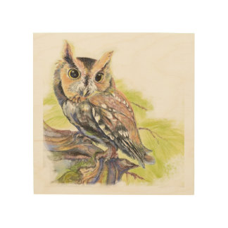 Watercolor Screech Owl Bird Animal Nature Art