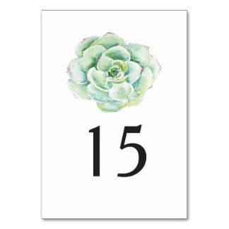 watercolor succulent wedding table number table cards