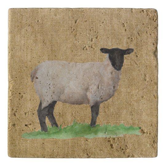 Watercolor Suffolk Sheep Trivets