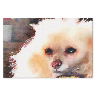 Watercolor Toy Poodle Face cream Tissue Paper