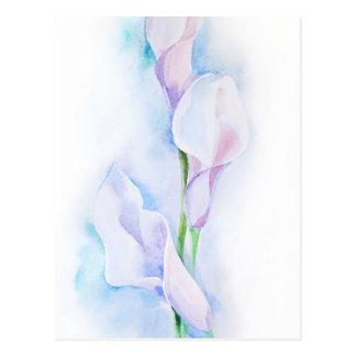 watercolor with 3 callas postcard