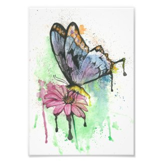 Watercolour butterfly photo print