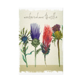 watercolour painting thistles wall art