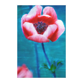 Watercolour poppy painting canvas print