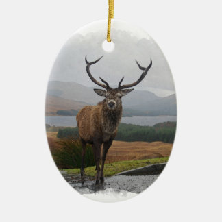 Watercolour Stag Christmas Ornament