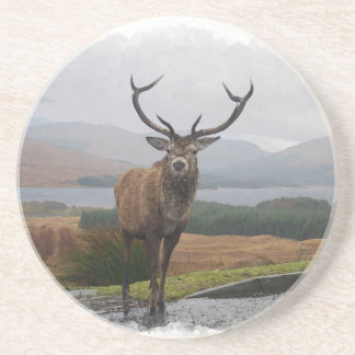 Watercolour Stag Coaster