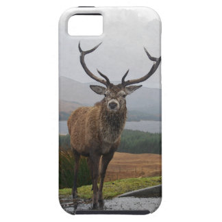 Watercolour Stag iPhone 5 Cover
