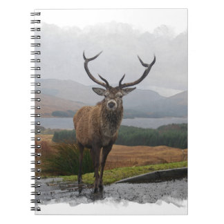 Watercolour Stag Notebooks