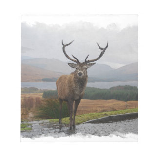 Watercolour Stag Notepad