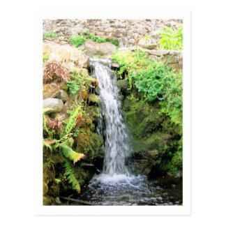 Waterfall 6 Venezuela Jungle Landscape Fine Art Postcard