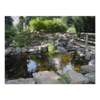 Waterfall and Pond Poster