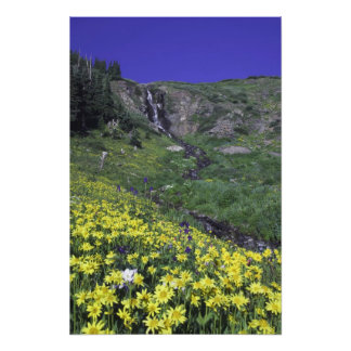 Waterfall and wildflowers in alpine meadow, art photo