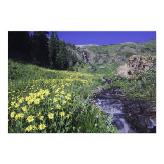 Waterfall and wildflowers in alpine meadow, photo