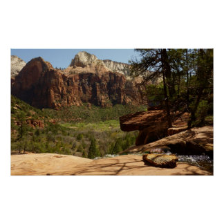 Waterfall at Emerald Pools in Zion National Park Poster