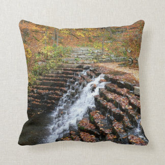 Waterfall at Laurel Hill State Park II Throw Pillow