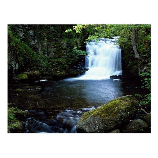 Waterfall at Watersmeet, North Devon, England Postcard