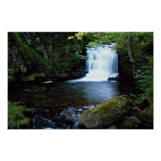 Waterfall at Watersmeet, North Devon, England Poster