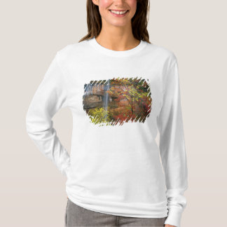 Waterfall, bigtooth maple Acer T-Shirt