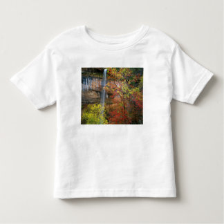 Waterfall, bigtooth maple Acer Toddler T-Shirt