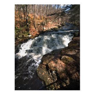 Waterfall - Bushkill Falls Postcard