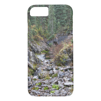 Waterfall case