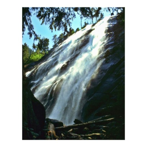 Waterfall From Beneath Large Tree Flyer