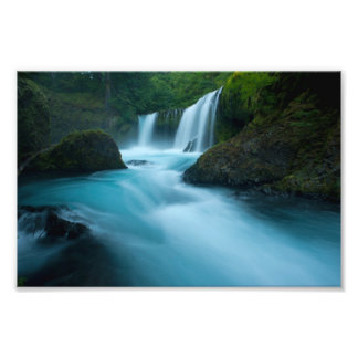 Waterfall in a Forest of the Pacific Northwest Photo Print