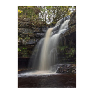 Waterfall in Autumn Acrylic Wall Art