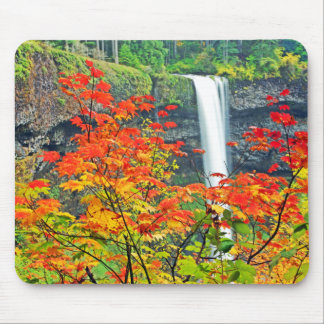 Waterfall In Autumn Mouse Pad
