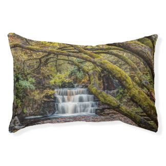Waterfall in Autumn Pet Bed