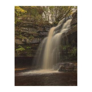 Waterfall in Autumn Wood Wall Decor