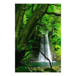 Waterfall in Azores islands Art Photo