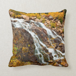 Waterfall In Grand Teton National Park Cushion