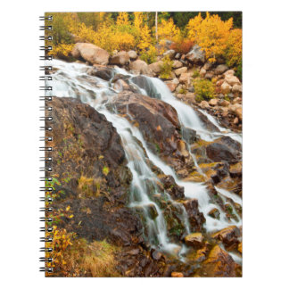 Waterfall In Grand Teton National Park Spiral Notebook