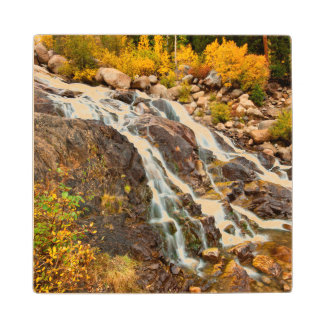 Waterfall In Grand Teton National Park Wood Coaster
