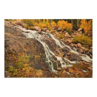 Waterfall In Grand Teton National Park Wood Print