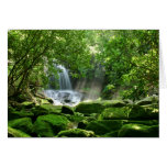 Waterfall in Rain Forest Greeting Cards