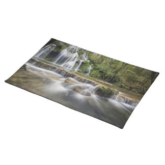 Waterfall in the wood placemat