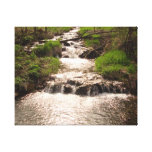 Waterfall Nature Woods Photography Canvas Print MN
