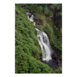 Waterfall Near Hilo, Hawaii Poster