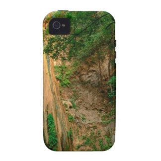 Waterfall Nojoqui Santa Barbara County iPhone 4/4S Cases
