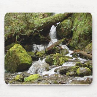 Waterfall on South Shore Road at Lake Quinault Mouse Pad