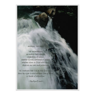 Waterfall Poster Wildlife Conservation Poem