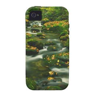 Waterfall Roaring Fork Smoky Mountian Vibe iPhone 4 Cover