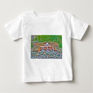 Waterfall Rock (1 of 1).jpg T-shirts