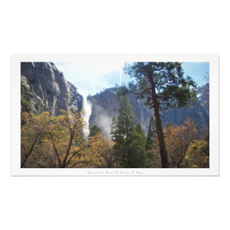 """Waterfall the Forest,"" Yosemite Nature Decor Photographic Print"