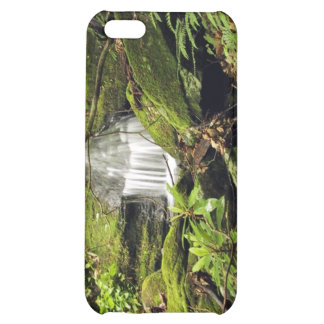 Waterfall through fern trees cover for iPhone 5C