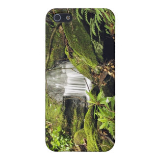 Waterfall through fern trees case for iPhone 5